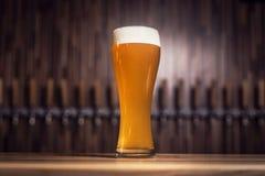 Cerveza clara con espuma en el fondo de golpecitos Foto de archivo