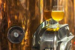 Cerveza clara en una cervecería fotografía de archivo