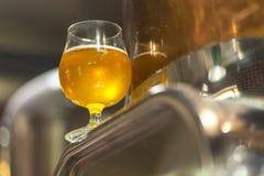 Cerveza clara en una cervecería imagenes de archivo