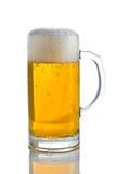 Cerveza con espuma Foto de archivo libre de regalías