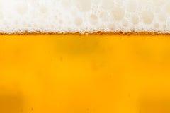 Cerveza con espuma en el vidrio Fotografía de archivo libre de regalías