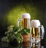 Cerveza con espuma y una rama del salto Fotos de archivo