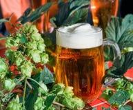 Cerveza con los saltos Imagen de archivo libre de regalías