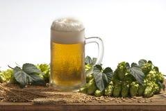 Cerveza de barril con los saltos Fotografía de archivo libre de regalías
