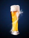 Cerveza de cerveza dorada en cubilete Fotografía de archivo