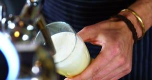Cerveza de colada del camarero del golpecito de la cerveza almacen de metraje de vídeo