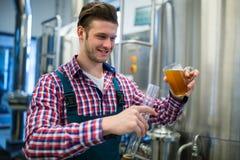 Cerveza de colada del cervecero en cilindro del aerómetro Fotografía de archivo libre de regalías