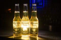 Cerveza de Corona Extra imagen de archivo libre de regalías