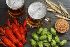 Cerveza de cristal con los cangrejos, los conos de salto y los oídos del trigo en fondo de madera oscuro Concepto de la cervecerí fotografía de archivo libre de regalías