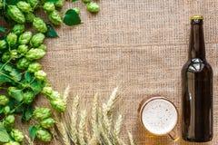 Cerveza de la botella y del vidrio con elaborar los ingredientes Flor del salto con trigo Visión superior Imagen de archivo libre de regalías