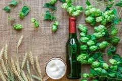 Cerveza de la botella y del vidrio con elaborar los ingredientes Flor del salto con trigo Visión superior Fotos de archivo
