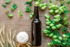 Cerveza de la botella y del vidrio con elaborar los ingredientes Flor del salto con trigo Visión superior Fotografía de archivo libre de regalías