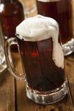 Cerveza de raíz de restauración fría fotos de archivo libres de regalías