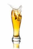 Cerveza del chapoteo en vidrio Imágenes de archivo libres de regalías