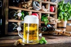 Cerveza e ingredientes frescos de la sidra Imágenes de archivo libres de regalías