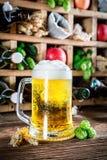 Cerveza e ingredientes frescos de la sidra Fotografía de archivo libre de regalías