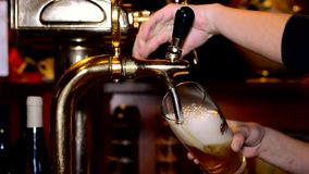 Cerveza en el pub