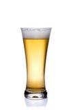Cerveza en el vidrio fotografía de archivo libre de regalías