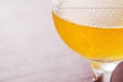 Cerveza en el vidrio al vidrio provenido Imagen de archivo libre de regalías