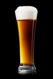 Cerveza en el vidrio en un negro fotografía de archivo libre de regalías