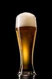 Cerveza en el vidrio en un negro imágenes de archivo libres de regalías