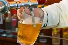 Cerveza en golpecito Imagen de archivo libre de regalías