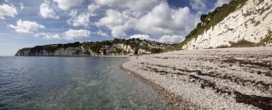 Cerveza en la costa jurásica de Devon Imagen de archivo libre de regalías