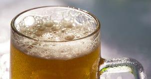 Cerveza en la luz del sol almacen de video