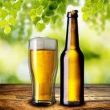Cerveza en la tabla de madera Imagen de archivo