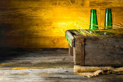 Cerveza en una caja Imagen de archivo libre de regalías