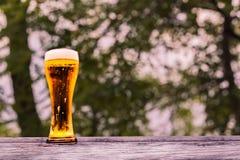 Cerveza en vidrio Fotos de archivo libres de regalías