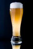 Cerveza espumosa fresca Imágenes de archivo libres de regalías