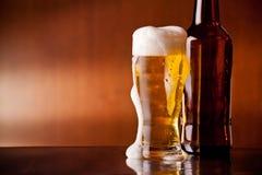 Cerveza fría Imagen de archivo libre de regalías