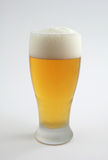 Cerveza fría en vidrio helado Foto de archivo libre de regalías