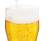 Cerveza fresca Imágenes de archivo libres de regalías