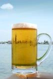 Cerveza fresca por el agua Imagenes de archivo