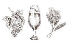 Cerveza inglesa en cubilete y crudo para la reproducción sabrosa de la cerveza stock de ilustración
