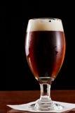 Cerveza inglesa roja irlandesa Foto de archivo libre de regalías