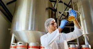Cerveza 4k de la prueba del cervecero almacen de metraje de vídeo