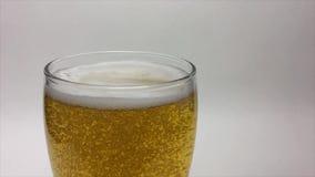 Cerveza ligera que vierte de la botella de cerveza almacen de metraje de vídeo