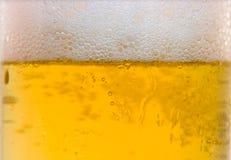 Cerveza nuevos 6 Fotografía de archivo