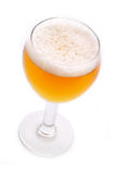 Cerveza recientemente vertida Imágenes de archivo libres de regalías