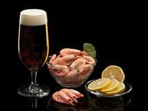 Cerveza y camarones hervidos Imagen de archivo