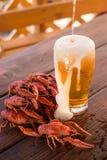 Cerveza y cangrejos hervidos Imágenes de archivo libres de regalías