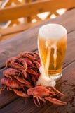 Cerveza y cangrejos hervidos Fotografía de archivo libre de regalías