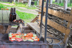 cerveza y comida en naturaleza Fotografía de archivo libre de regalías