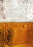Cerveza y espuma Imágenes de archivo libres de regalías