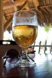 Cerveza y gafas de sol Imagen de archivo libre de regalías