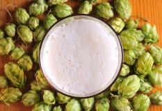 Cerveza y saltos Imagen de archivo libre de regalías