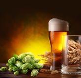 Cerveza y saltos. Imagen de archivo libre de regalías